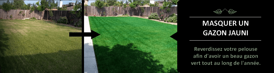 faire pelouse elegant regarnir une pelouse with faire pelouse du with faire pelouse beautiful. Black Bedroom Furniture Sets. Home Design Ideas